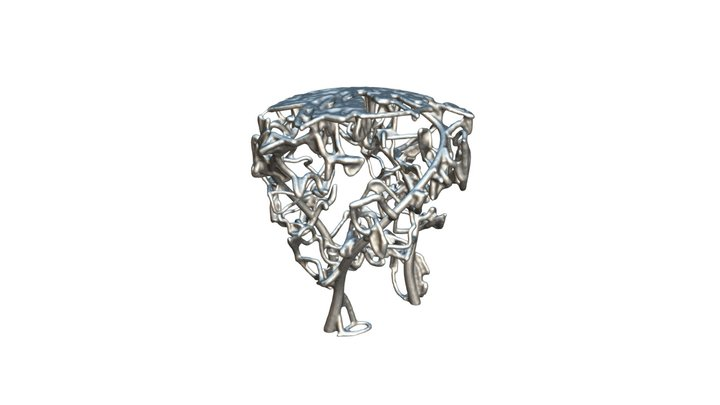 Neuronal Stool 3D Model