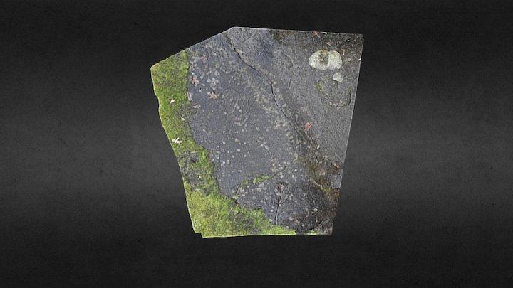 Gabriola Island Petroglyph #4
