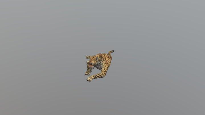 Leopard001-idle01 3D Model
