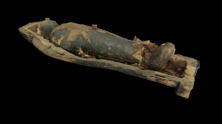Corn Mummy 3D Model