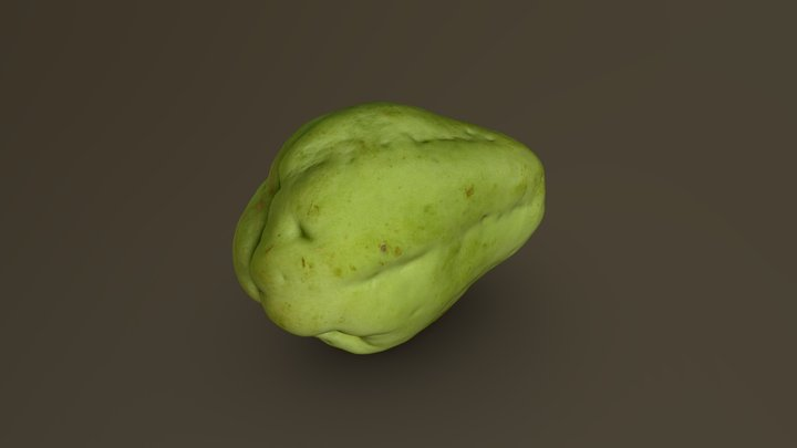 Chayote 04 3D Model