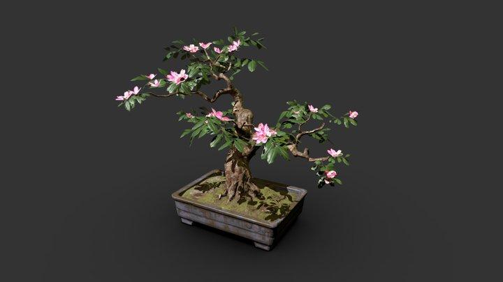 Bonsai with Golden Pollen 3D Model