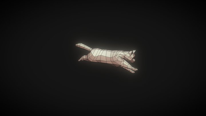 Lowpoly Cat Rig + Run Animation 3D Model