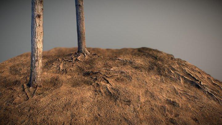 Woodland - Photogrammetry 3D Model