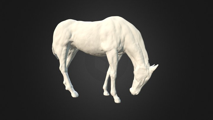 Horse modelled in ZBrush 3D Model