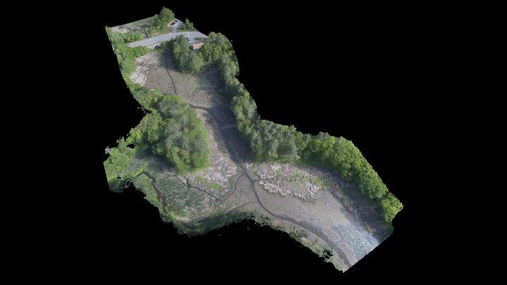 Beard's Creek Drawdown [2018-05-30] 3D Model