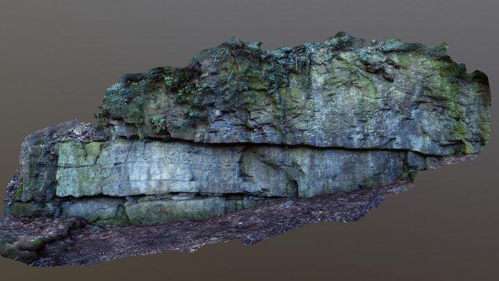 Sandstone and shale, Apollinaris church, Remagen 3D Model