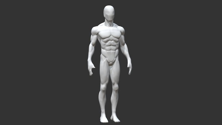 Anatomy study 2.0 Basemesh Human Male Body 3D Model