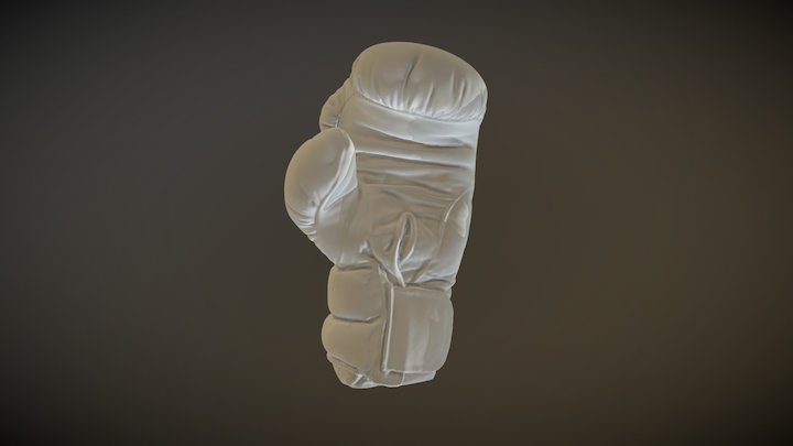 Boxing Glove 3D-scan by CreativeTools 3D Model