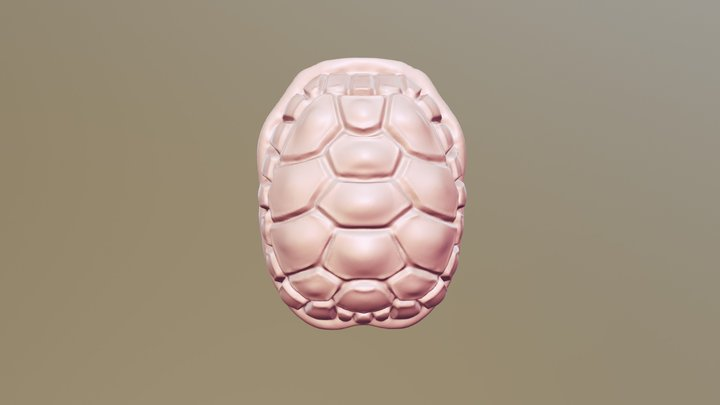 #SculptJanuary18 - Day 25: Shell 3D Model