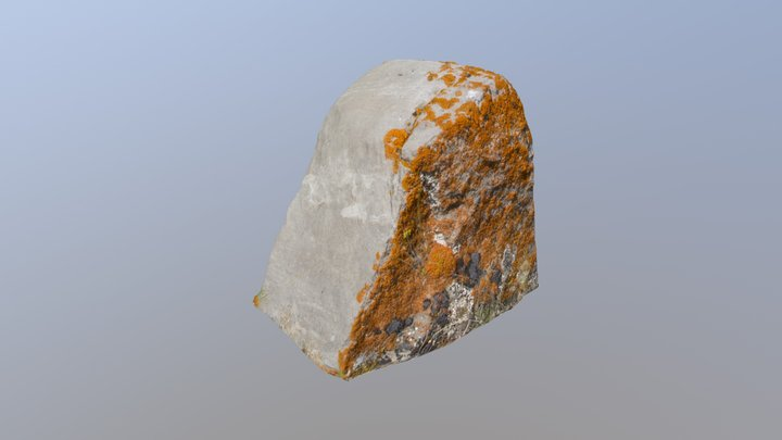 Upper Gros Ventre Rock 03 3D Model