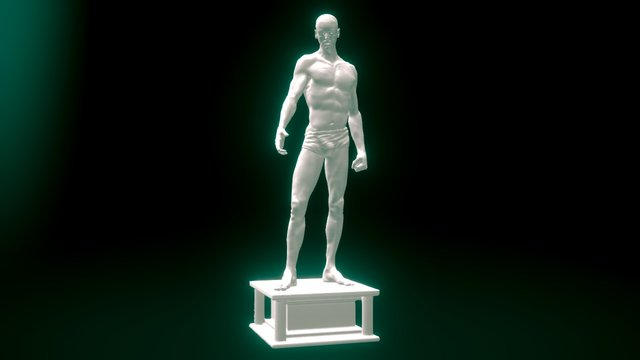 Male Anatomy Study 3D Model