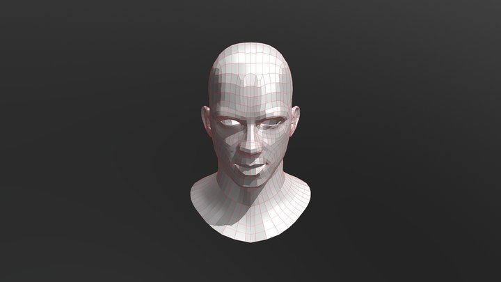 Anakin Retopo Test 3D Model