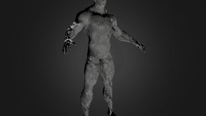 Stein-Wächter 3D Model