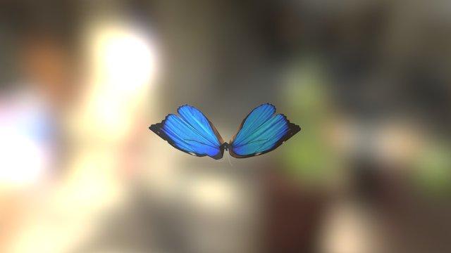蝴蝶 3D Model