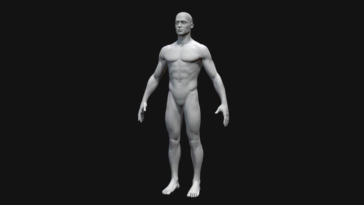 Male Base Model 3D Model