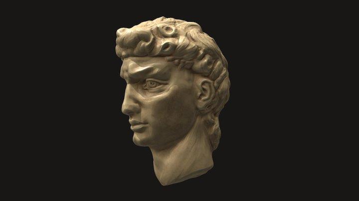 David study 3D Model