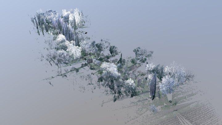 Giardini di Ninfa - Viale dei cipressi 3D Model