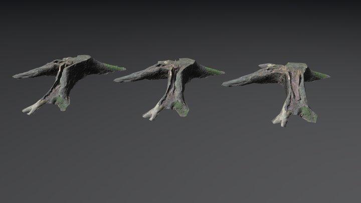 Stump 2 3D Model