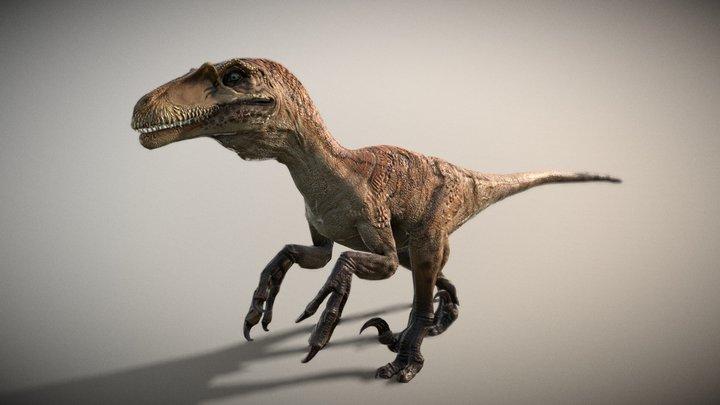 Dakotaraptor (Scaly) 3D Model