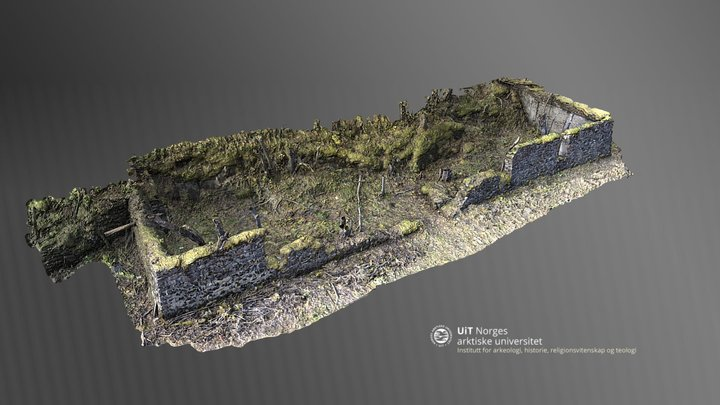 Stone wall foundations at Megården POW camp 3D Model