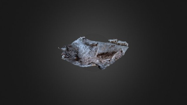 Tinshemet Cave _ inside area 3D Model