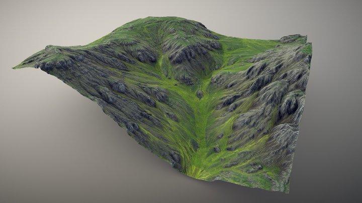 Flora Valley Terrain 3D Model