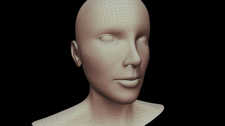 Human head topology practise 3D Model