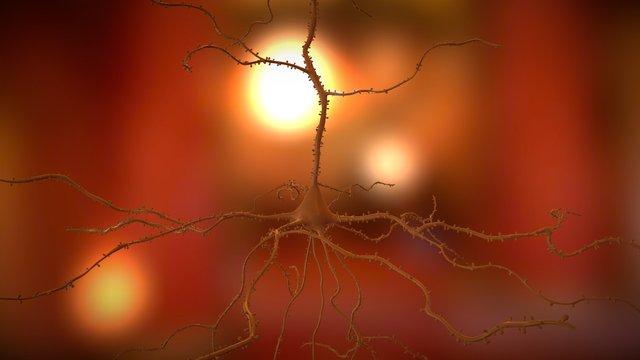 Neuron Action Potential 3D Model