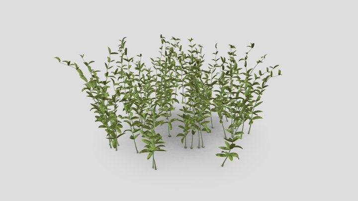 Plant to CleverAI 3D Model