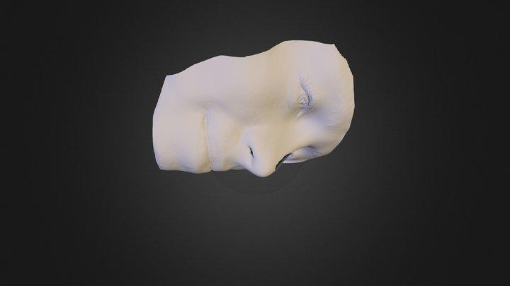 100345 3D Model