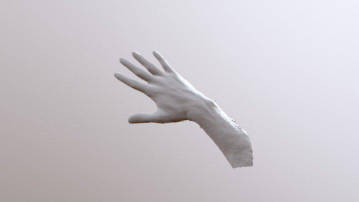Hånd 3D Model
