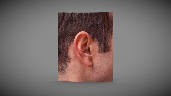 My Cousin Mike's Ear 3D Model