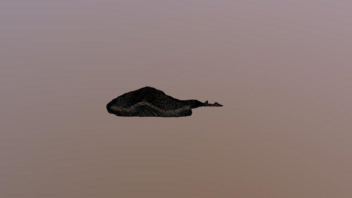 Stingray 3D Model
