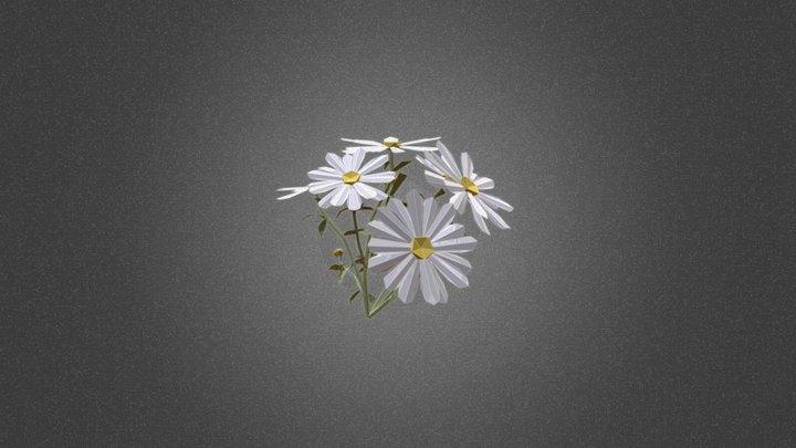 Margarita flower bush 3D Model