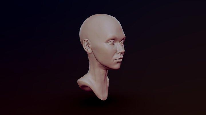 Head Sculpt Test 3D Model