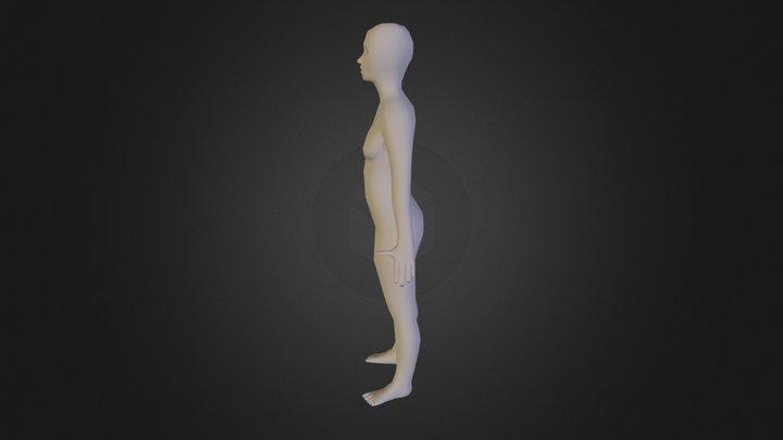 Body Mesh 3D Model