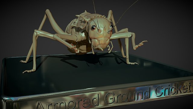 Armored Cricket (WIP) 3D Model