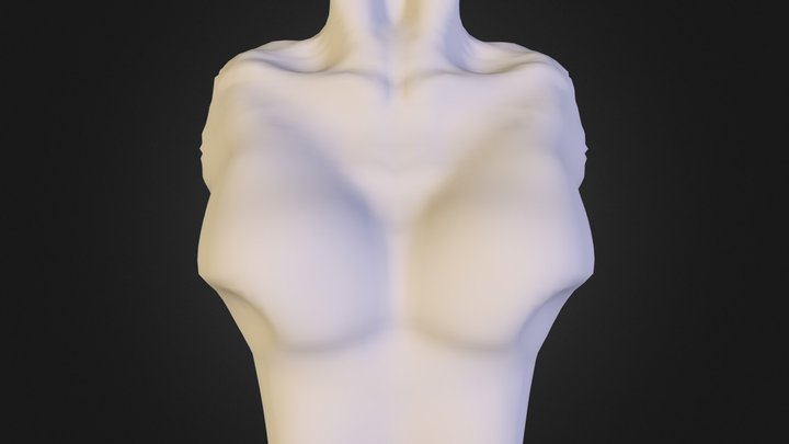 WIP_3.OBJ 3D Model