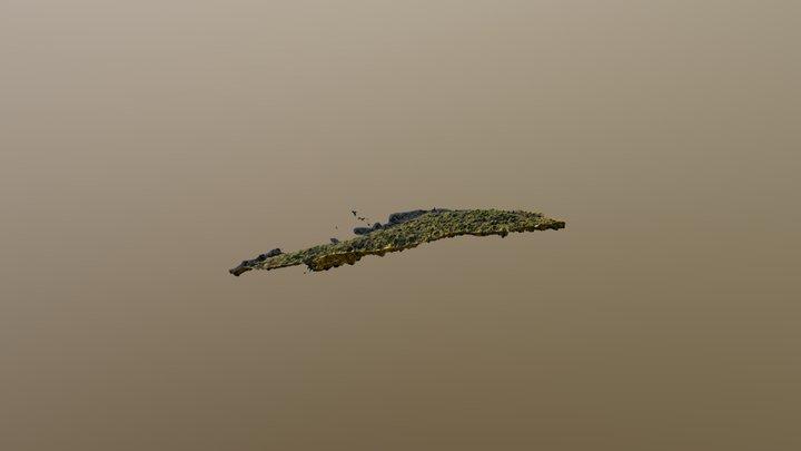 lago tepuhueico 3D Model