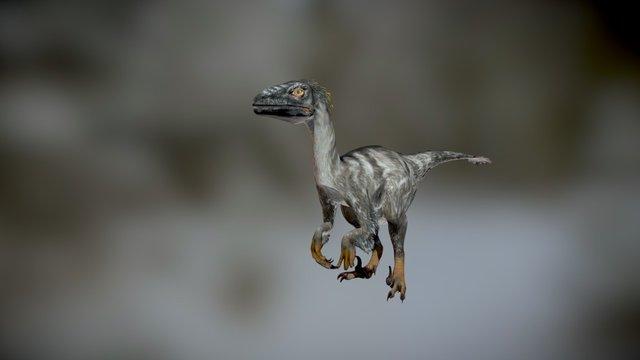Raptor 121 animations - dinosaur animation set 3D Model