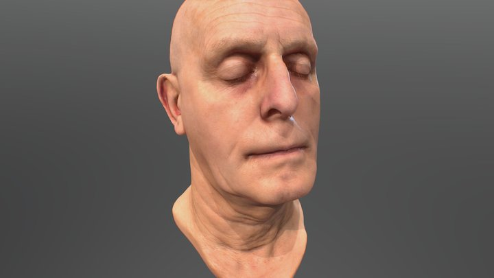 Sub Surface Scattering Example 3D Model