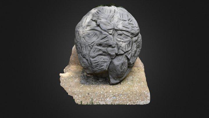 Strange Head