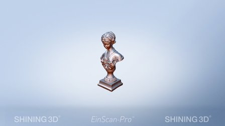 Venus sculpture by #EinScan-Pro 3D Model