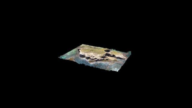 PENGUIN ISLAND WARRNAMBOOL 3D Model