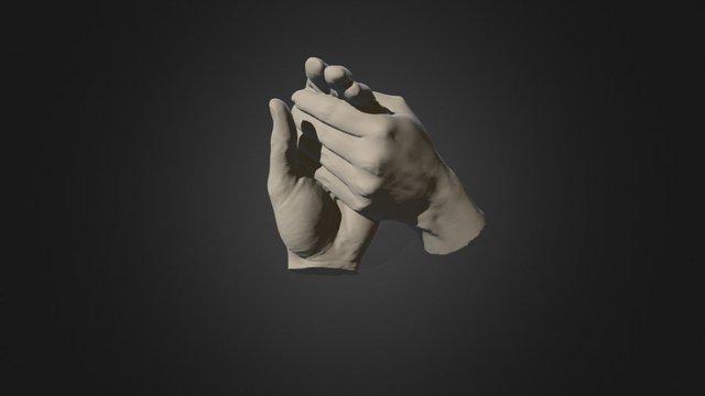 Twee Handen 3D Model