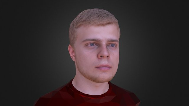 Head 3D scan 3D Model
