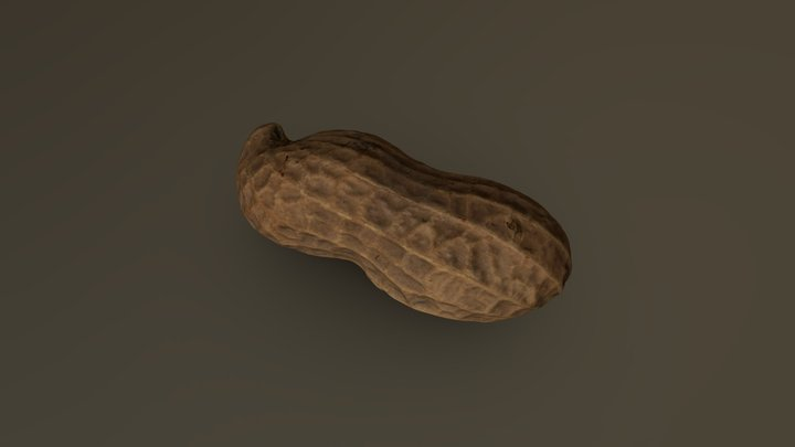 Peanut Pod 02 3D Model