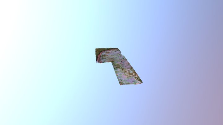 Moatize 3D Model
