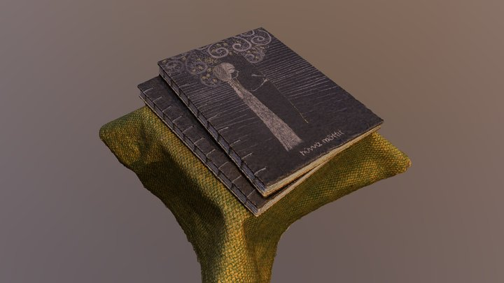 Notebooks in Coptic binding 3D Model